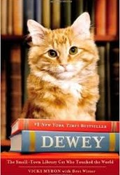Dewey the Library Cat