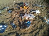 זיהום הים התיכון והגורמים לכך :