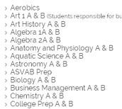 Virtual School Course List