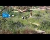 המסלולים בהרי יהודה ואזור השפלה.