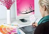 Multimedia Artist and Animators