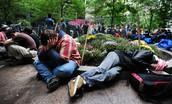 Homeless Park
