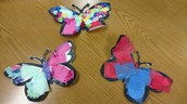 Collage Butterflies