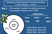Observational Comment Writing- Level 1 Sample