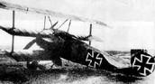 German WW1 Plane
