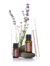 Come smell, taste and feel your way to better health!