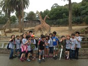 Field Trips & Special Events