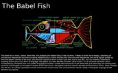 bodyparts and special features inside/outside from a babel fish