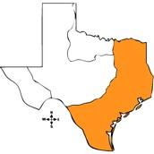 Region of Texas