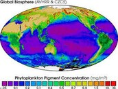 Where is the biosphere located?