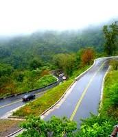 Las rutas de la selva