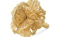 Geneve Lace Ring - Gold