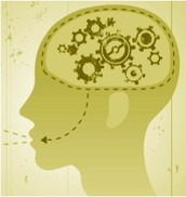 The Brain Uses Different Parts of the Brain to Process Information