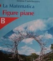 La matematica Figure piane