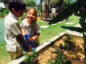 Prep 2 RDa watering their Butterfly garden