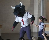 Houston Texans' Toro Anti Bullying Presentation