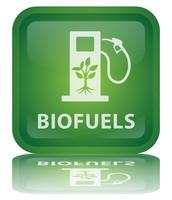 biodeisel