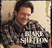 Blake Shelton is one of my favorite singers, I have many more.