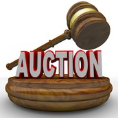 The items that were auctioned off are listed below.