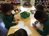 We can record our observations in a drawing!