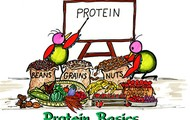Protein Basics
