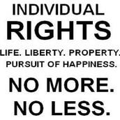 Principle 7. Individual rights