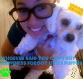 My puppy Mia