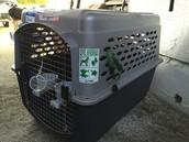 Large size travel dog crate $45