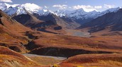 Tundra Canyons