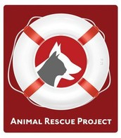 Our non-profit organization is dedicated to our animals!