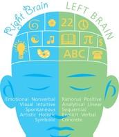Characteristics of left and right hemispheres.
