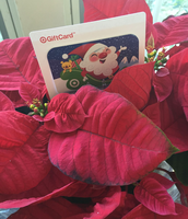 Staff gifts for December