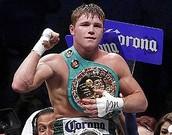 Cane lo Alvarez professional boxer