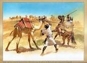 Romains ont conquis la Corse dans le troisième siècle avant JC et régi jusqu'à 469 après J.-C.