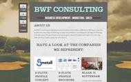 BWF Consulting