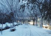 diciembre- December