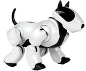 A Robot Dog