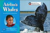 Spelling list for Adelina's Whales
