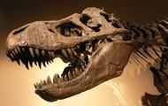 Tyrannosaurus Rex Was King