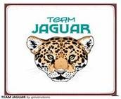Supervision : Team Jaguar