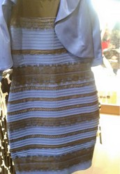 What Color Is The Dress ?