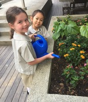 Prep 2 TGa are looking after their butterfly garden.