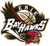 Chesapeake Bay Hawks