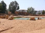 תמונה של אחד מהאזורים בגן החיות