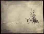 """האונייה """"פראם"""""""