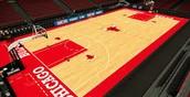 Bulls basketball court