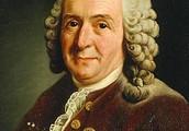 Linnaeus 1735