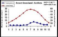 Temperature in the grasslands