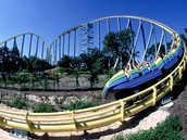 Steel Eel Roller Coaster