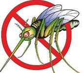 Repel those pesky mosquitos!